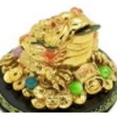 Golden Fortune Money Frog