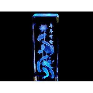 Nine Carps 3D Laser Engraved Glass with Light Base1