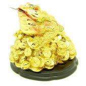 Golden Giant Good Fortune Money Frog1