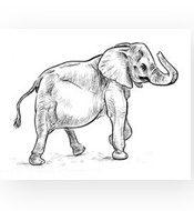 feng_shui_elephant