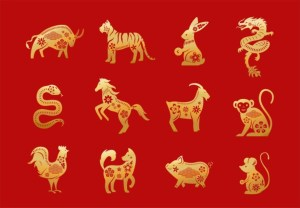 12 Animals in the chinese zodiac