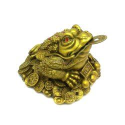 Brass Money frog