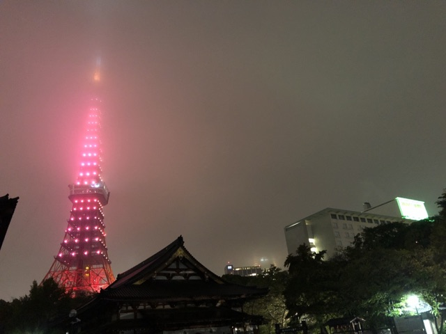 Tokyo Tower and Tokyo Prince Hotel