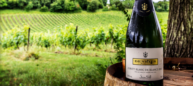 Denbies Wine Special Offers and Discount Codes Banner