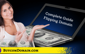 Complete Guide Domain Flipping