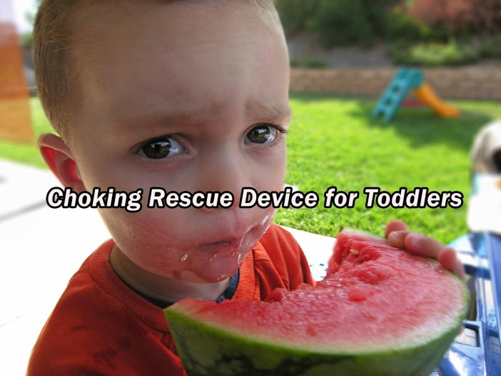 Toddler Sized Anti Choking Device
