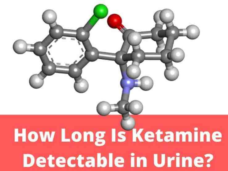 Pass a Ketamine Urine Test