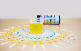 Is Synthetic Urine Illegal in the United States?