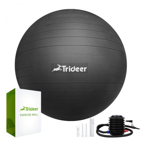 Trideer Exercise Ball (45-85cm) Extra Thick Yoga Ball Chair - Office Ball Chairs