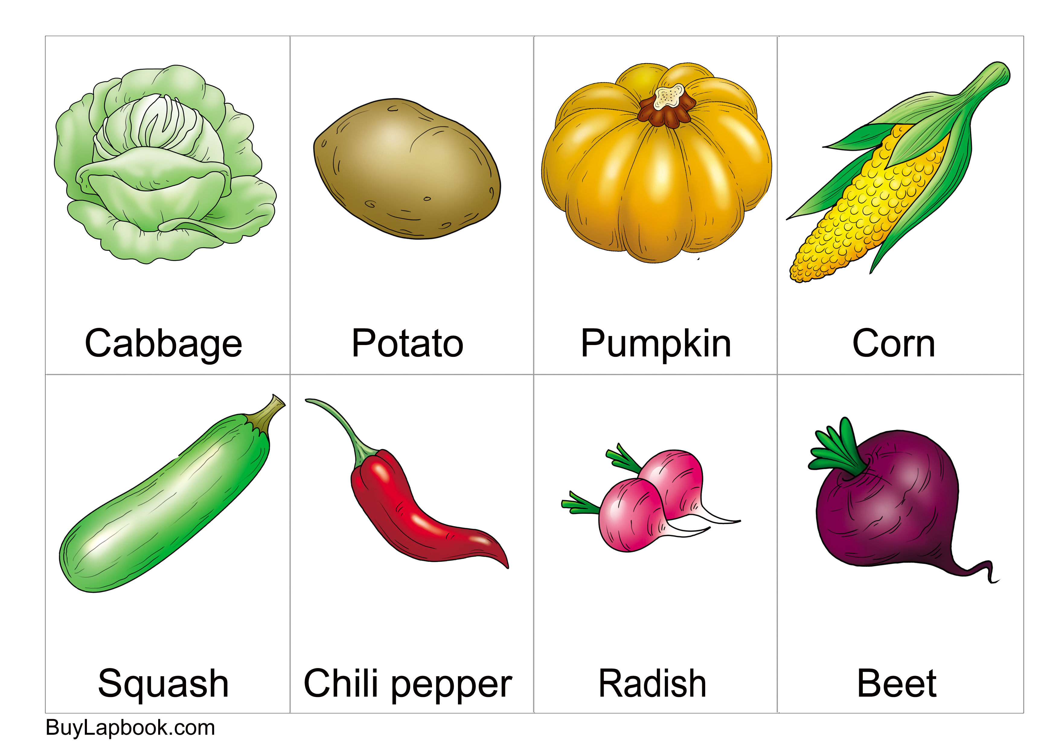 Free Printable Vegetables Flashcards With Names For
