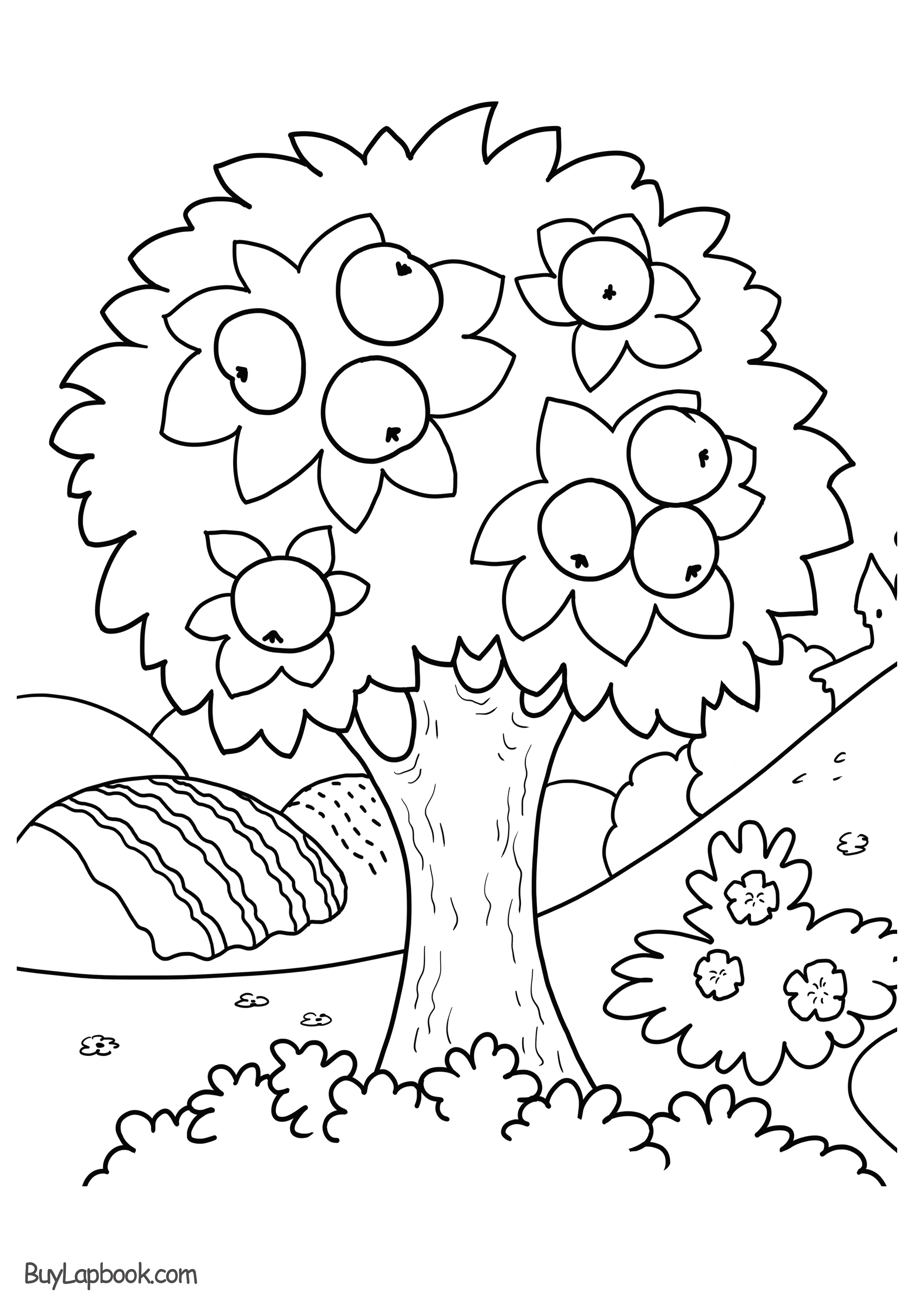 Apple Tree Coloring Page Free Printable Buylapbook
