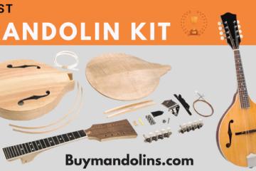 The Loar LM-220-VS Mandolin Performer   Buy Mandolins