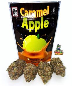 5 points la,Apple,Backpack,Backpack Boys,Backpack Boyz,bag,Boys,Boyz,buy Caramel Apple Backpack boyz Online online,Caramel,Caramel Apple,Caramel Apple Backpack boyz Online,Caramel Apple Backpack boyz Online for sale,Caramel Apple Backpack boyz Online strain,Caramel Apple Backpack boyz Online weed pack,Caramel Apple Backpack boyz Online gas house,Gas,Gas House,GP,Heat,Heat Sealed,House,Mylar,Mylar Bags,Nugz,Number,order Caramel Apple Backpack boyz Online online,Sealed,Sherbzilla,the Smugglers Club,Top Tier,ziplock