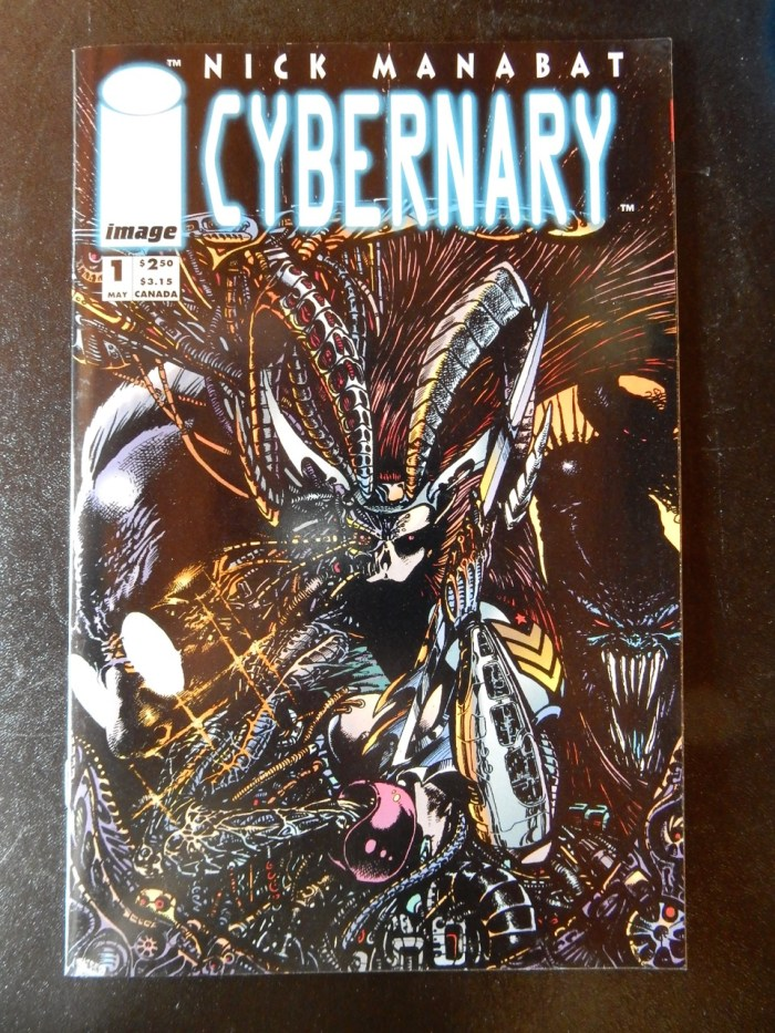 Cybernary #1 from Image Comics