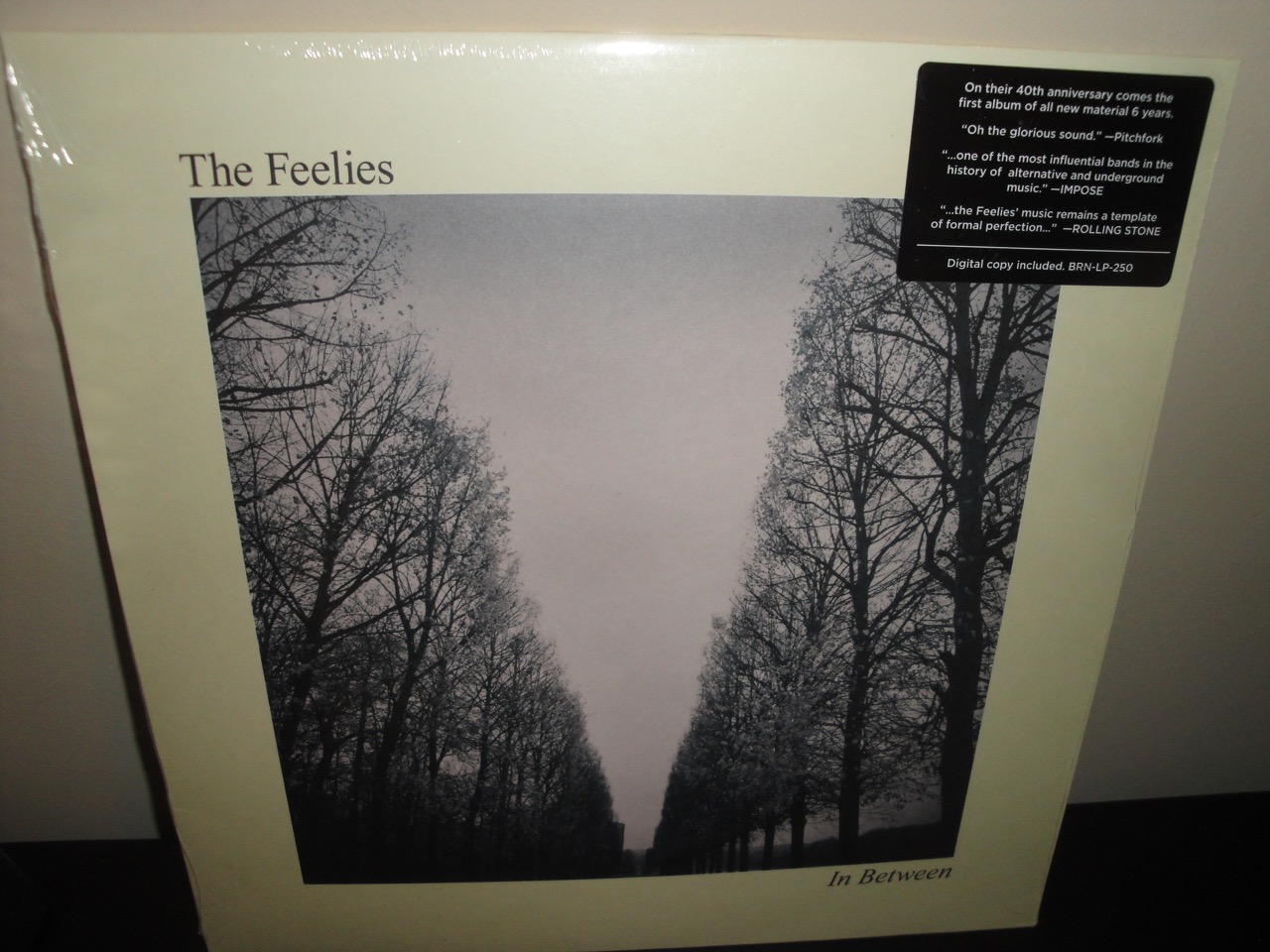 The Feelies - In Between - 2017 Vinyl LP with Digital Download