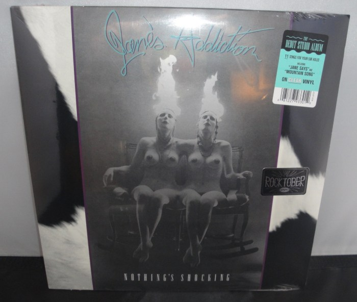 Jane's Addiction - Nothing Shocking