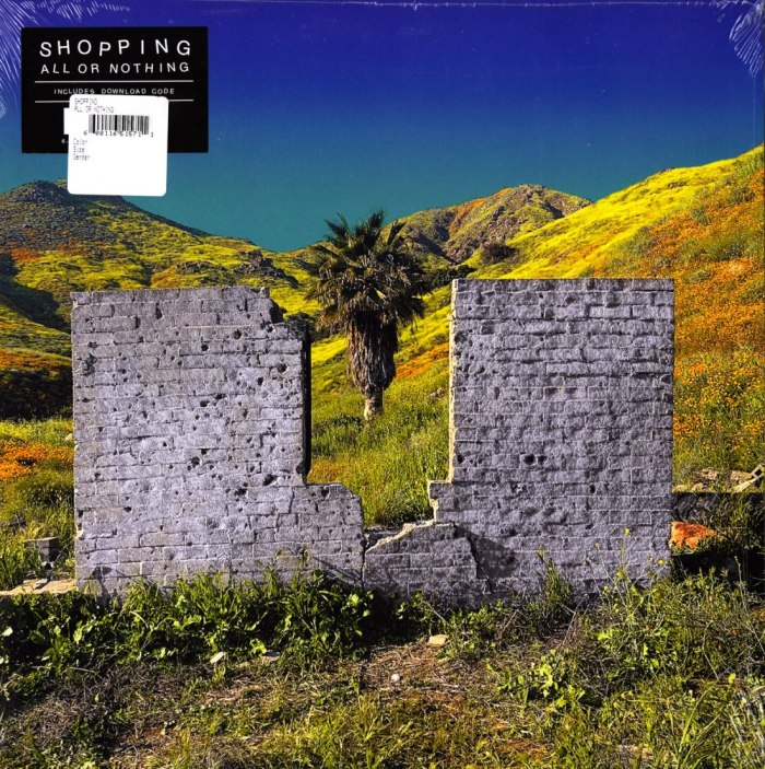 Shopping - All Or Nothing - Vinyl, LP, Fat Cat, 2020