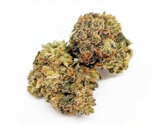Purple Candy Kush