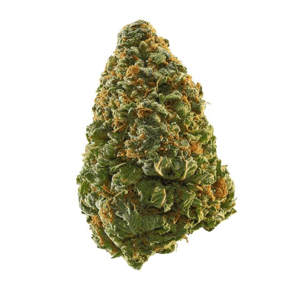 Green Crack (GC)