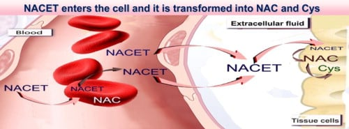 About N-Acetylcysteine ethyl ester (NACET)