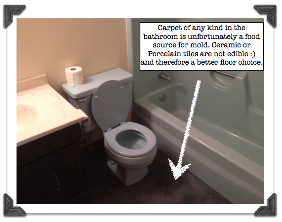 Carpet around the toilet gives buyers and visitors the creeps (especially around the toilet, as I'm sure you can image!) Image via HomerepairTutor