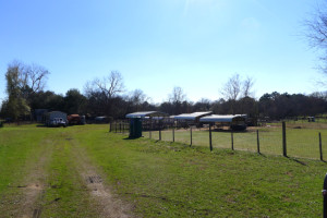 316 & 320 Hemby, Elkhart, TX 75839 - Land/ Animal Farm for Sale