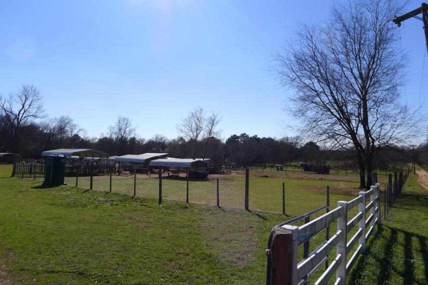 316 & 320 Hemby, Elkhart, TX 75839 - Land/ Animal Farm for Sale