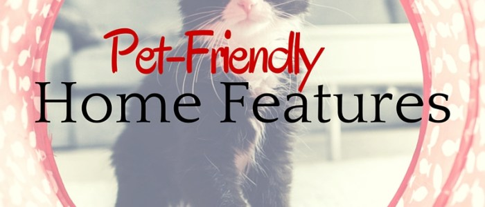 Pet-Friendly Home Features