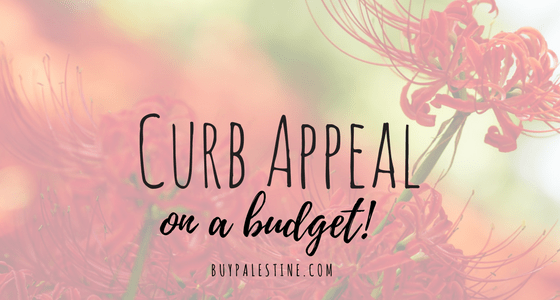 Curb Appeal on a Budget!
