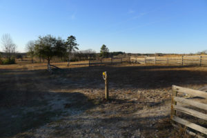 3 Bed 2 Bath Country House for Rent in Palestine TX- 1980 ACR 421, Palestine, TX 75803