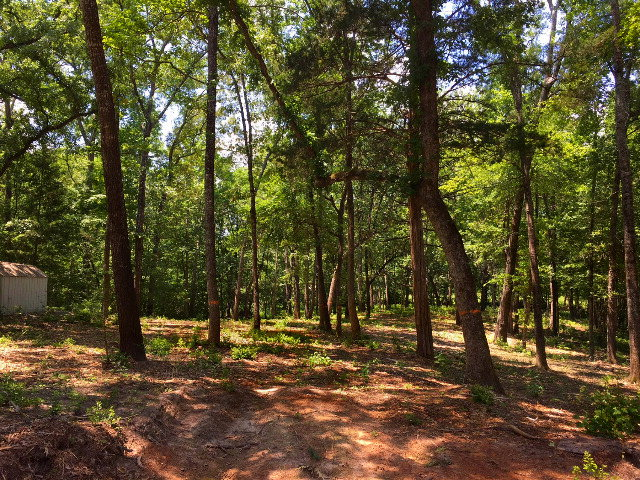 Land For Sale in Palestine TX- 2.41 Acres For Sale