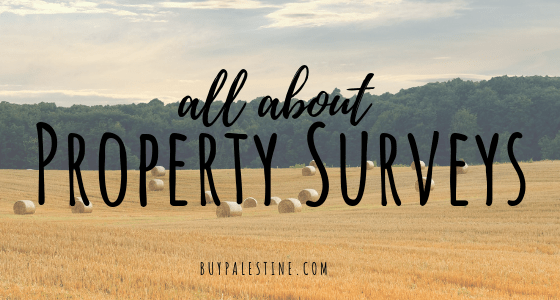 All About Property Surveys