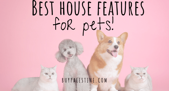 Best House Features for Pets