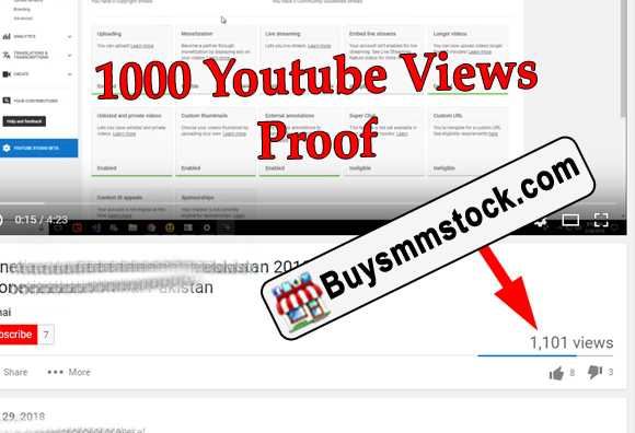 1000 Youtube Views Proof