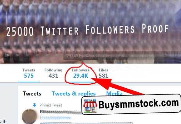 25000 Twitter Followers Proof