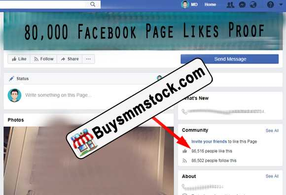 80000 Facebook Page Likes Proof