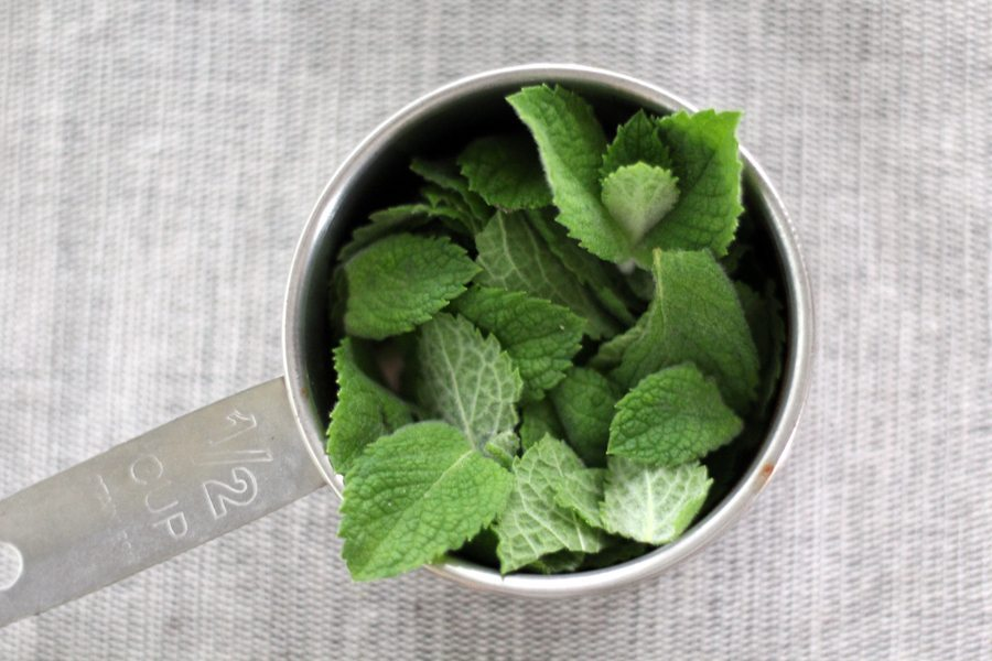 Fresh mint leaves in a measuring cupp
