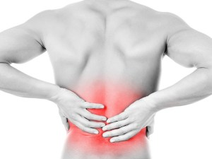 Back Pain Coach - Back Pain