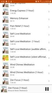 Screen Capture of Music Playlist
