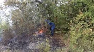 Antalya'da orman yangını çıktı! Ekipler bölgede
