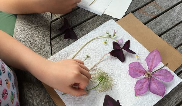 Garden Activities & Crafts for Kids