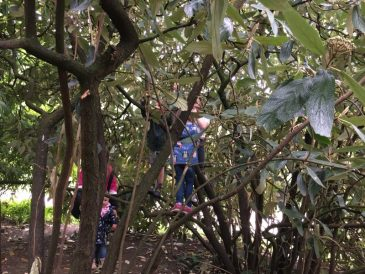 Buzymum - Cliveden is the perfect place to climb!