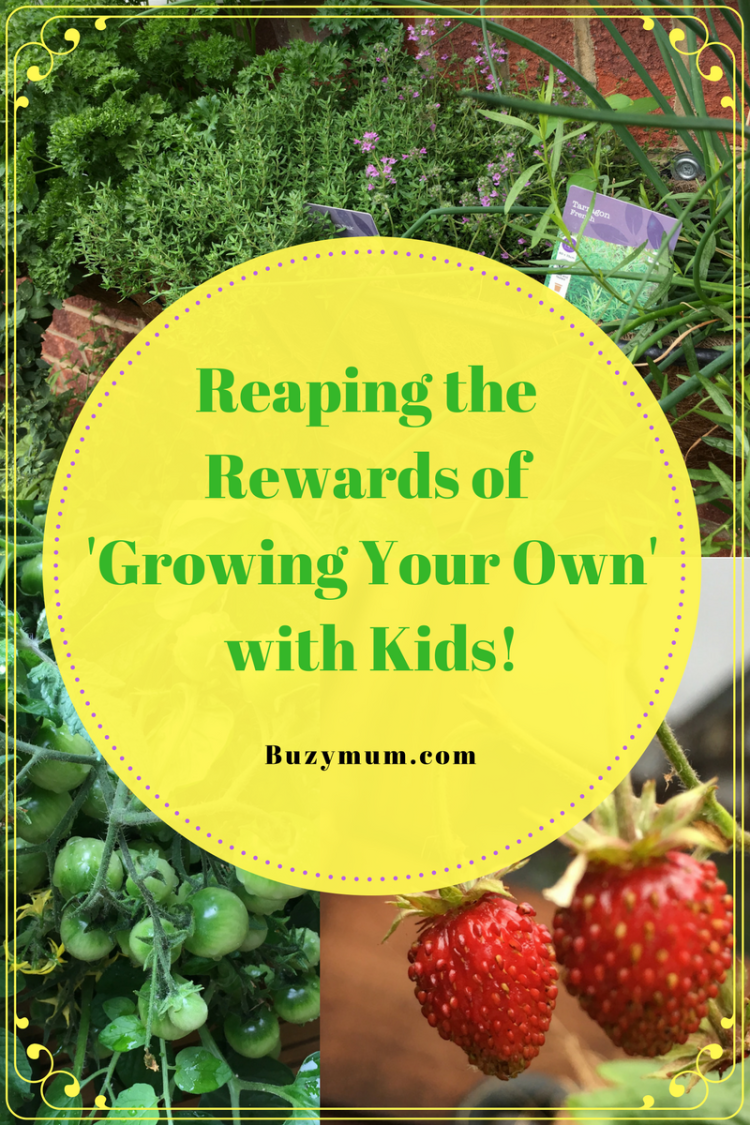 Buzymum - Reaping the Rewards of 'Growing Your Own' with Kids!