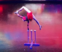 Buzymum - More from the Mongolian circus, our favourite show!