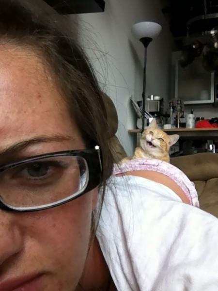 funny-cat-photobombs-53-58e3abfaacb5d__605