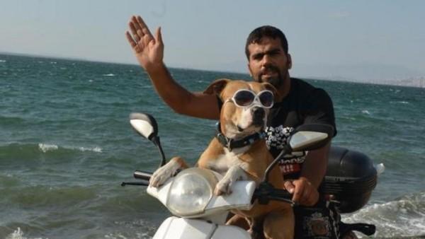 Sahibiyle Motora Atlayıp Tüm Yurdu Gezen Havalı Köpek Zıpkın'ın Gülümseten Hikayesi