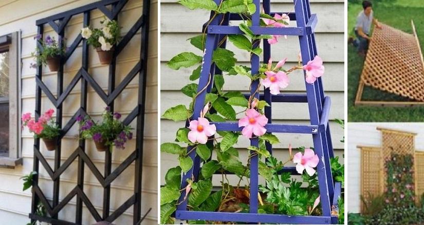 15 Ingenieuses Facons De Creer Votre Propre Treillis De Jardin