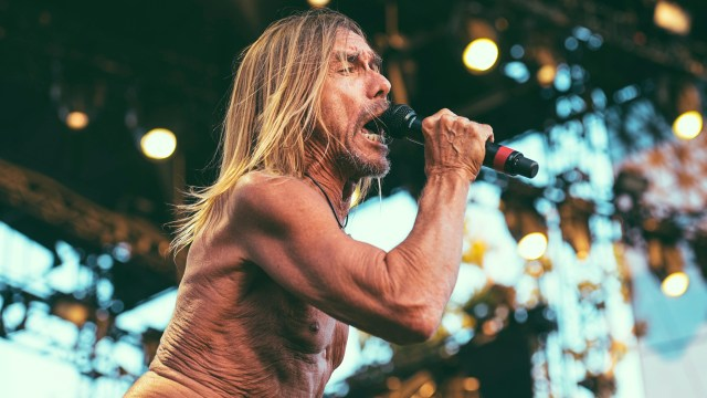 Iggy Pop at FYF Fest (Photo by Zane Roessell)