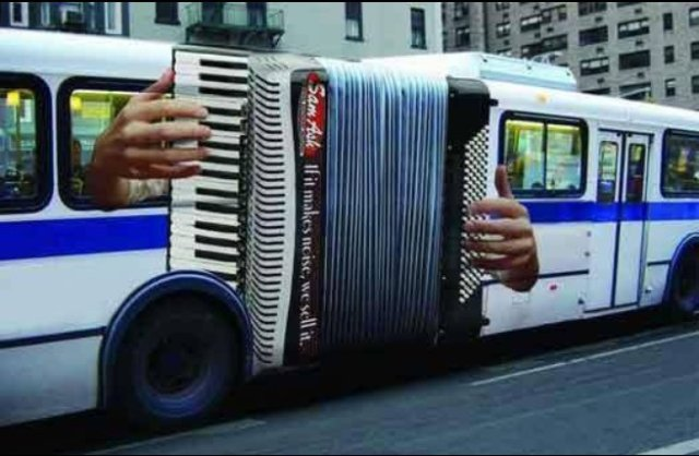 Anyone up for some bus polka?