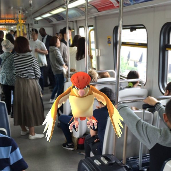 Pidgeotto caught by @christ1990 on Canada Line